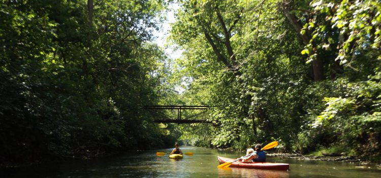 Mad River Kayak and Canoe Trip